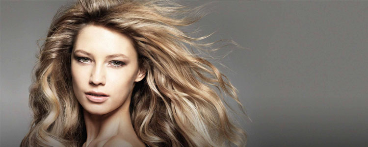 Professional Hair Care for every taste for every need